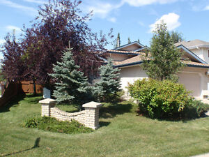 Great condition split-level in Deer Ridge - Move-in Ready!!