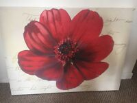 Large red flower canvas
