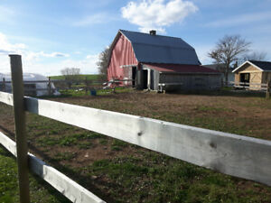 2 stalls available in private barn