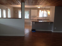 Lake Country, steps to Lake, lower level of house 2 bd, 1 bath