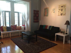 Beautiful Spacious 1 Bedroom (3 1/2) in McGill Ghetto for Summer