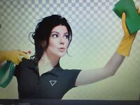 GIRL FRIDAY CLEANING~ WIN 3 HOURS FREE CLEANING~  780-933-3954