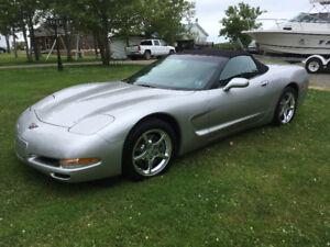 Corvette Convertible- 2004