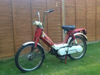 Honda pa50 Camino moped
