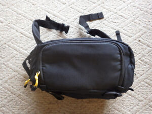 Fanny pack, large