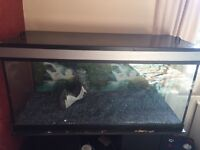 180L fish tank with stand £100