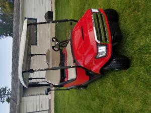 Custom Club Car Precedent Electric golf cart