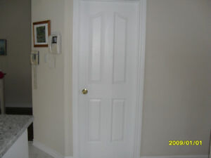 White pantry door 28 x 80
