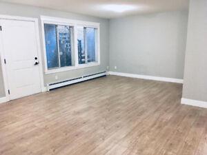 ### 2 bedroom basement suite for rent: utilities included ###