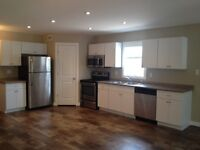 Brand New 3BR 1.5 Bath Townhouse Small Pets Considered Avail Now