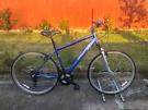 bike33