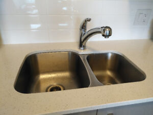 Delta Pull-Out Sprayer Kitchen Faucet in Chrome –Excellent shape