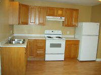 Lovely 2 Bedroom Apartment With Washer & Dryer in Hartland NB
