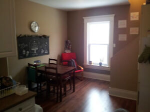Renovated 4 bed on trent express available may 1