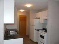 SELLER MOTIVATED!!!  Renovated Condo with Great Location