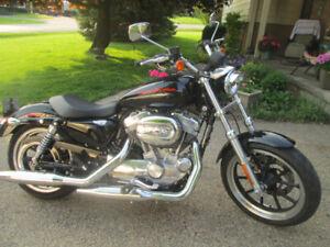 2014 Harley-Davidson XL883L SuperLow For Sale