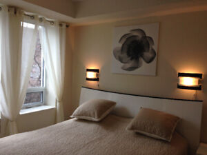 Downtown Luxury Fully Furnished 1560 SF Suite