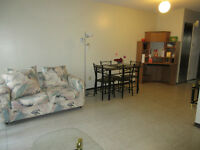 One room in a 2-bdr apartment beside Lakehead University