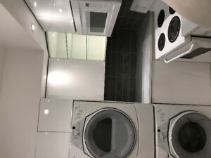 2BR apt W/full renovated kitchen & bathroom in heart of Plateau
