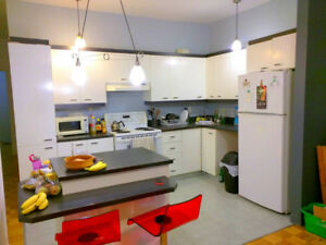 Female Only 5 1/2 condo mins to downtown, McGill, Concordia, Met