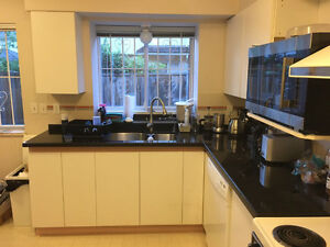 Free granite kitchen counters and cupboards