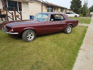 1967 Vintage Burgandy Mustang