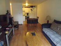 Beautiful 4 1/2 appartment to sublet as of Sept. 1st
