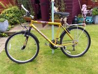Apollo Frenzy Mountain bike 21 inch
