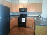 Looking to rent 1bed/1bath fully furnished 111 St and Macewan!!
