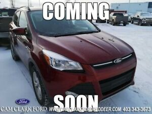 2016 Ford Escape SE  | Low KM's | Clean Carfax |