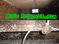 Mold Removal / Remediation, Mould Inspections from $150 Waterloo