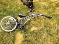 Genuine Adams trail-a-bike