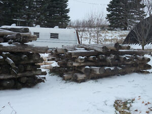 Fence Posts Kawartha Lakes Peterborough Area image 2
