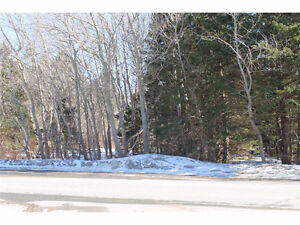LAND for sale in Holyrood!!!!