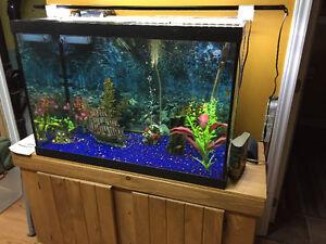 65 Gallon Marineland aquarium complete