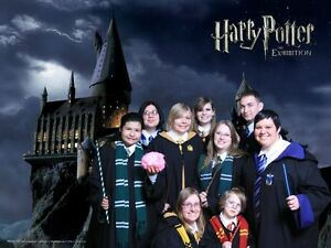 Harry Potter House ties and patches