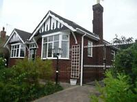 2/3 Bedroom detached dormer bungalow, lovely large rooms,quiet residential area,nr Weelsby Woods