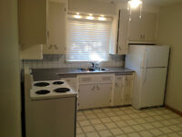 Pet friendly 2 bedroom home with amazing yard!