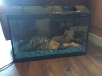 Fish tank, accessories, and stand for sale
