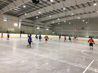 ball hockey team needed in oshawa- team needs ind players