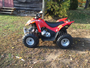 2014 Arctic Cat DVX 90 Youth Quad