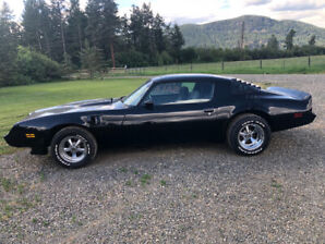 1981 Pontiac Firebird Coupe (2 door)