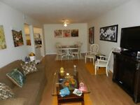 $725 special.  2 bed condo style apart for rent now.