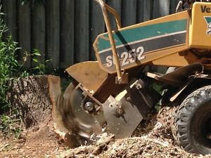 Medway Stump Removal Services. London Ontario image 3