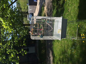 Almost new brand cage WITH STAND and food and toy for sale
