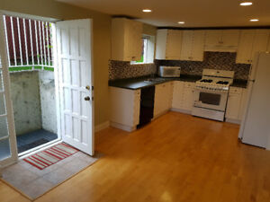 Bright 2 BR 1BA - semi-furnished and plenty of storage (Keith E