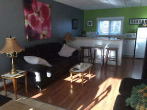 Two bedroom furnished apartment $85/night $65 for one bedroom