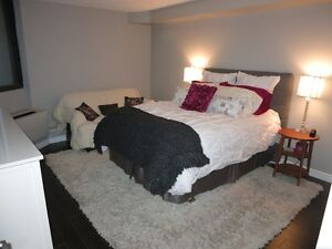 Downtown-Beautiful 1+ Bed Condo (avail. Jan. 1st) London Ontario image 5