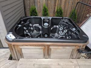 Arctic Spas Hot Tub (7' Arctic Fox)