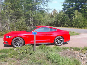 2015 Ford Mustang GT Coupe (2 door)
